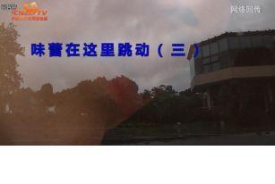 球场美食-长江上的鲜味
